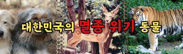 대한민국의 멸종 위기 동물
